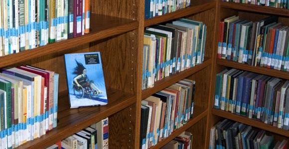 Poetry collection located in McGinnis room.