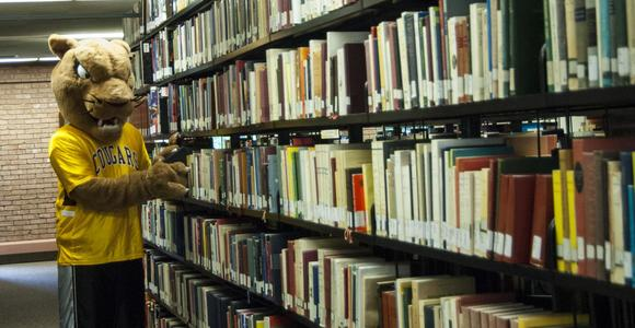 Pounce the Cougar searches the stacks of books.