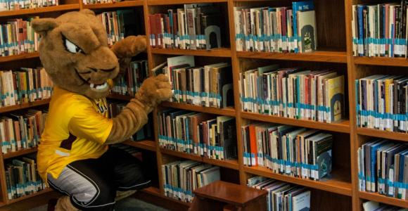 Pounce the Cougar selects a poetry book.