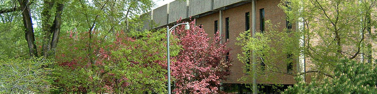 Briggs Library in the Spring