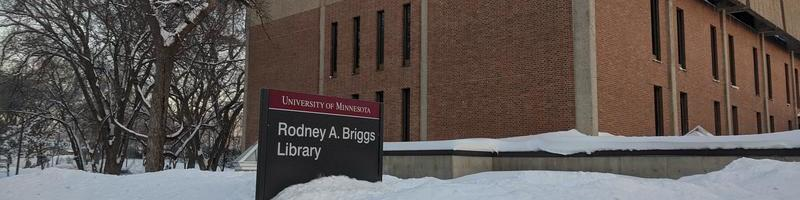 snowy library picture.